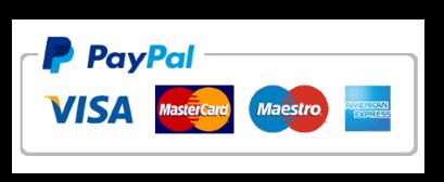 Роман  «Челленджер». Современный роман. PayPal – поддержать литературный проект. Ян Росс.